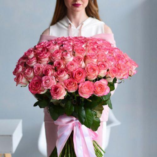 101-роза-джумилия-1-500×500