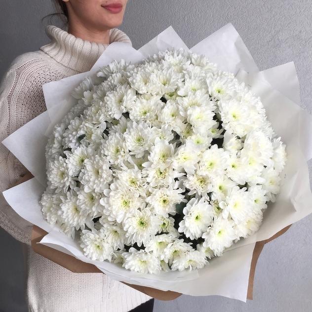 нарышкинская средняя букет из белых хризантем фото трать свои нервы