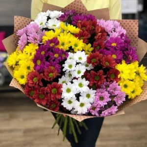 25 кустовых хризантем микс
