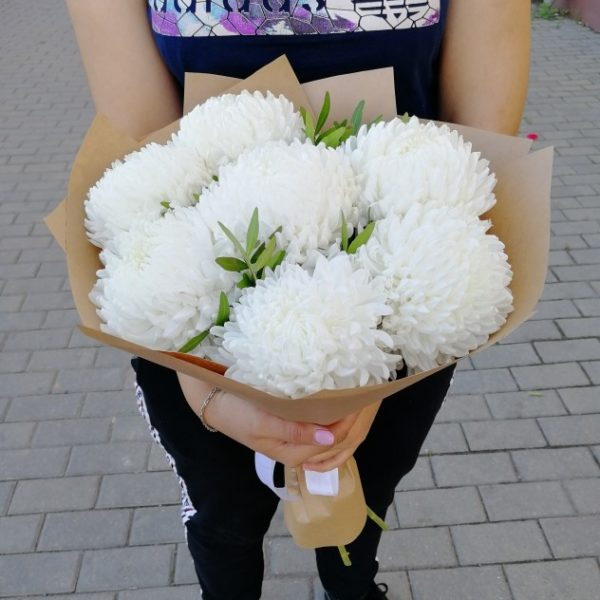 15 хризантем одноголовых